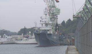 ①調査捕鯨 01