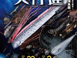 深海魚大行進