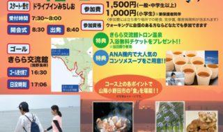 30kmウォークチラシ(最終)-コピー-728x1024